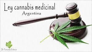flor de cannabis 3
